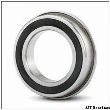 AST GE100ET-2RS plain bearings