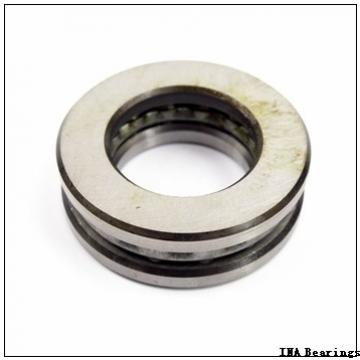 INA SL06 030 E cylindrical roller bearings