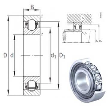 INA BXRE08 needle roller bearings 8 mm x 22 mm x 7 mm