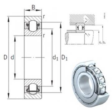 INA BXRE08-2Z needle roller bearings 8 mm x 22 mm x 7 mm