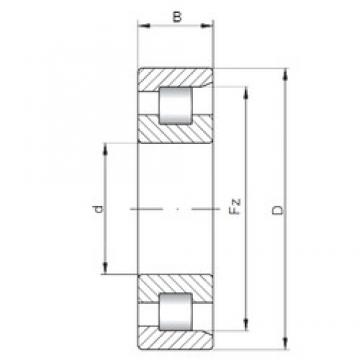 ISO NF3034 cylindrical roller bearings 170 mm x 260 mm x 67 mm