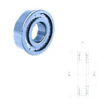 INA F-211978.01 cylindrical roller bearings 55 mm x 115 mm x 28 mm